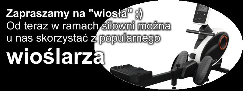 wioslarz